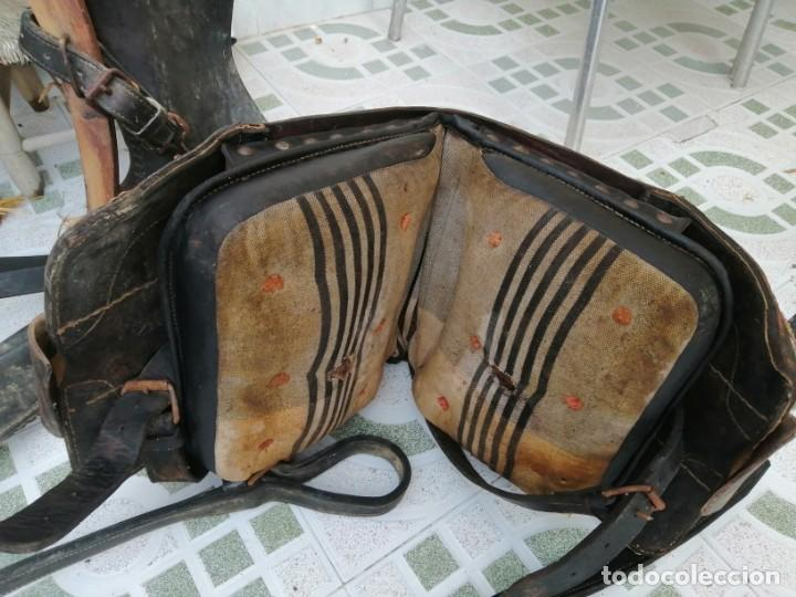 Antigüedades: silla de burro o mula mas jamuga y con correajes etc ver fotos - Foto 7 - 206169942