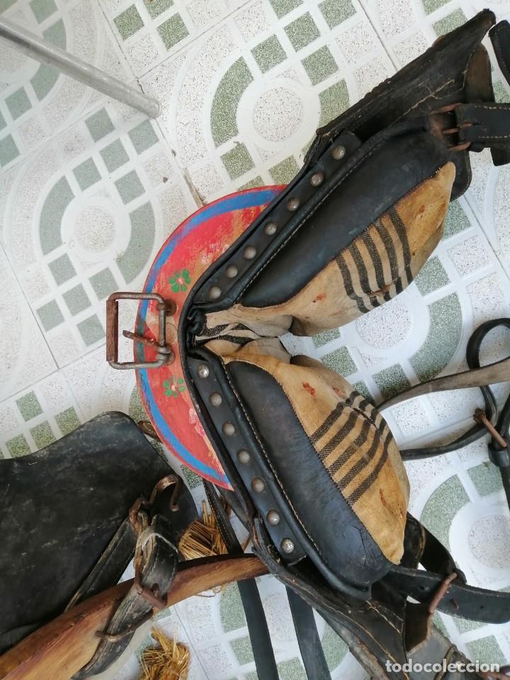 Antigüedades: silla de burro o mula mas jamuga y con correajes etc ver fotos - Foto 9 - 206169942