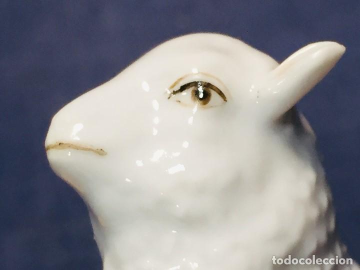 Antigüedades: figura cordero porcelana alemana real fabrica berlin pintado mano marca azul s XVIII XIX 5,5x8x5cms - Foto 10 - 206318730