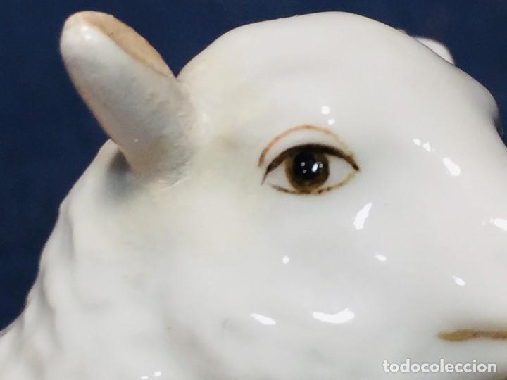 Antigüedades: figura cordero porcelana alemana real fabrica berlin pintado mano marca azul s XVIII XIX 5,5x8x5cms - Foto 18 - 206318730