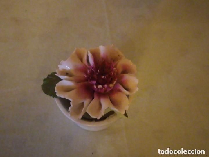Antigüedades: Bonito macetero con una flor de porcelana,radnor staffordshire england. - Foto 4 - 206426532