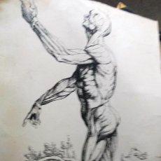 Antigüedades: ANTIGUO GRABADO O IMPRESION SOBRE PAPEL BERJURADO DE 75 CM. Lote 206561046