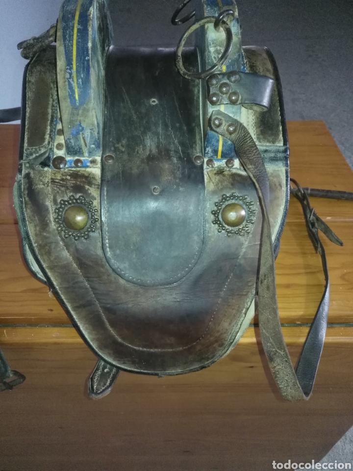 Antigüedades: Etnografía Antigua Albarda , Silla de carga para burro o mula. Apero caballería, muy buen estado - Foto 7 - 207542593