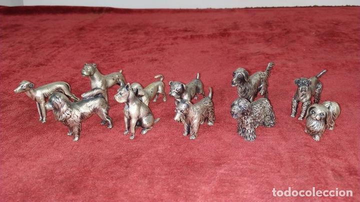 Antigüedades: CONJUNTO DE 11 FIGURAS DE PERROS. METAL PLATEADO. ESPAÑA. SIGLO XX - Foto 13 - 207819372
