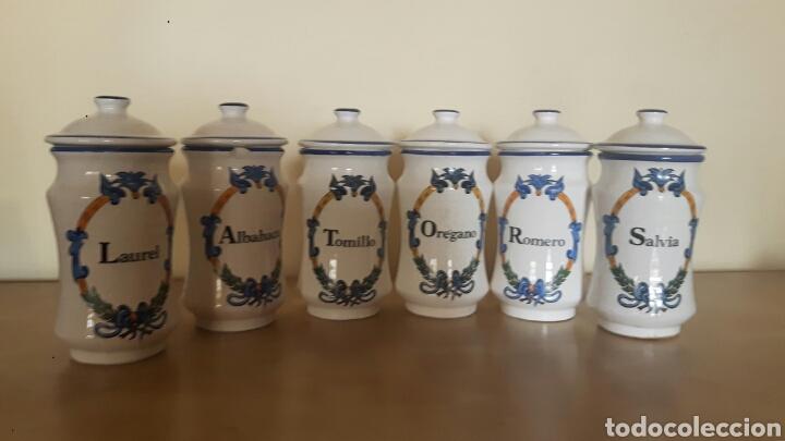 SET COMPLETO 6 TARROS CERÁMICA ESPECIAS WANDER (Antigüedades - Porcelana y Cerámica - Holandesa - Delft)