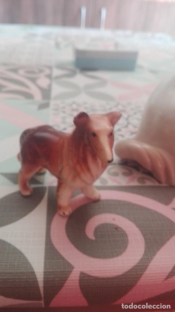 Antigüedades: Porcelana perros - Foto 4 - 208921380