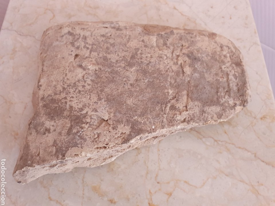 Antigüedades: ANTIGUO FRAGMENTO DE AZULEJO RELIGIOSO REALIZADO EN TERRACOTA S.XVIII-XIX - Foto 6 - 161011918