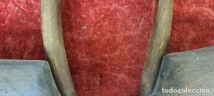 Antigüedades: YUGO ARISCO PARA MULA O RES. MADERA. HERRAJES EN HIERRO FORJADO. SIGLO XIX - Foto 3 - 210012731