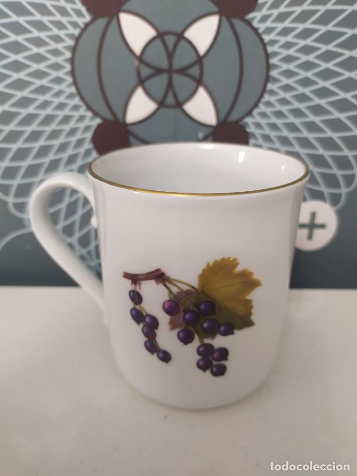 Antigüedades: Taza porcelana inglesa Royal worcester - Foto 3 - 210736092