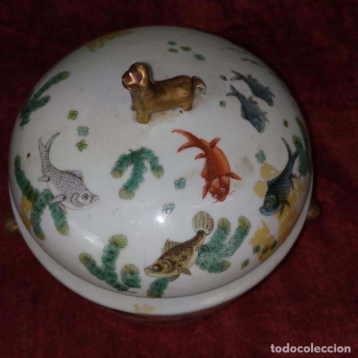 Antigüedades: 2 SOPERAS KAMCHENG. FAMILIA ROSA Y FAMILIA VERDE. PORCELANA. CHINA. FIN SIGLO XIX - Foto 31 - 211389007