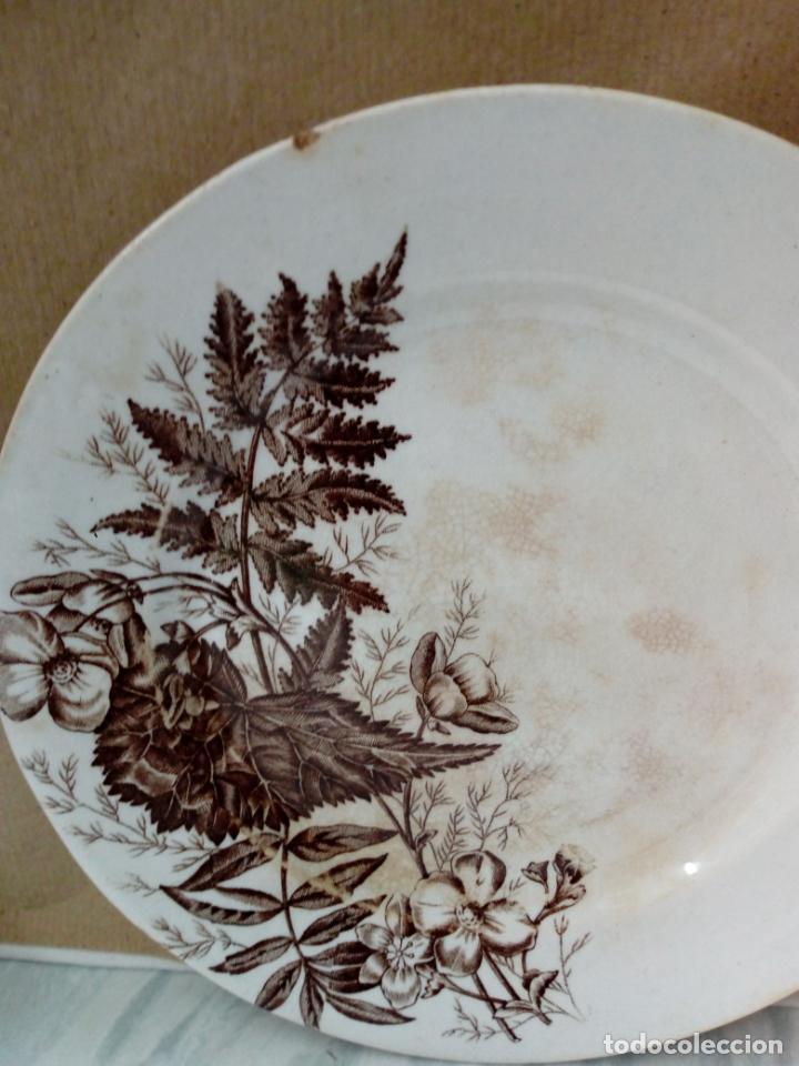 Antigüedades: antiguo plato de loza - sandeman-macdougla- san juan de aznalfarache . sevilla - - Foto 2 - 211890592