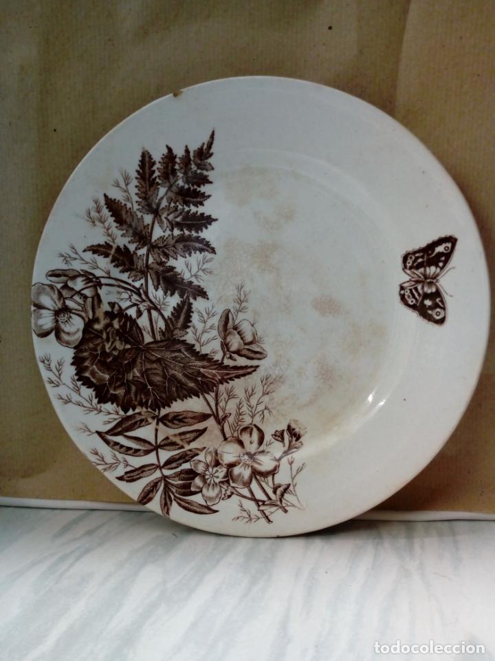 Antigüedades: antiguo plato de loza - sandeman-macdougla- san juan de aznalfarache . sevilla - - Foto 3 - 211890592