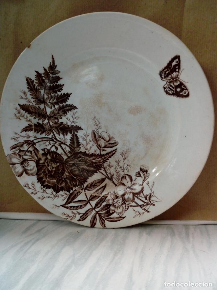 Antigüedades: antiguo plato de loza - sandeman-macdougla- san juan de aznalfarache . sevilla - - Foto 4 - 211890592