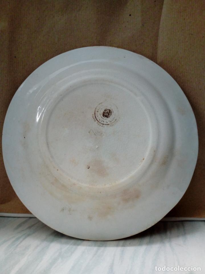 Antigüedades: antiguo plato de loza - sandeman-macdougla- san juan de aznalfarache . sevilla - - Foto 6 - 211890592
