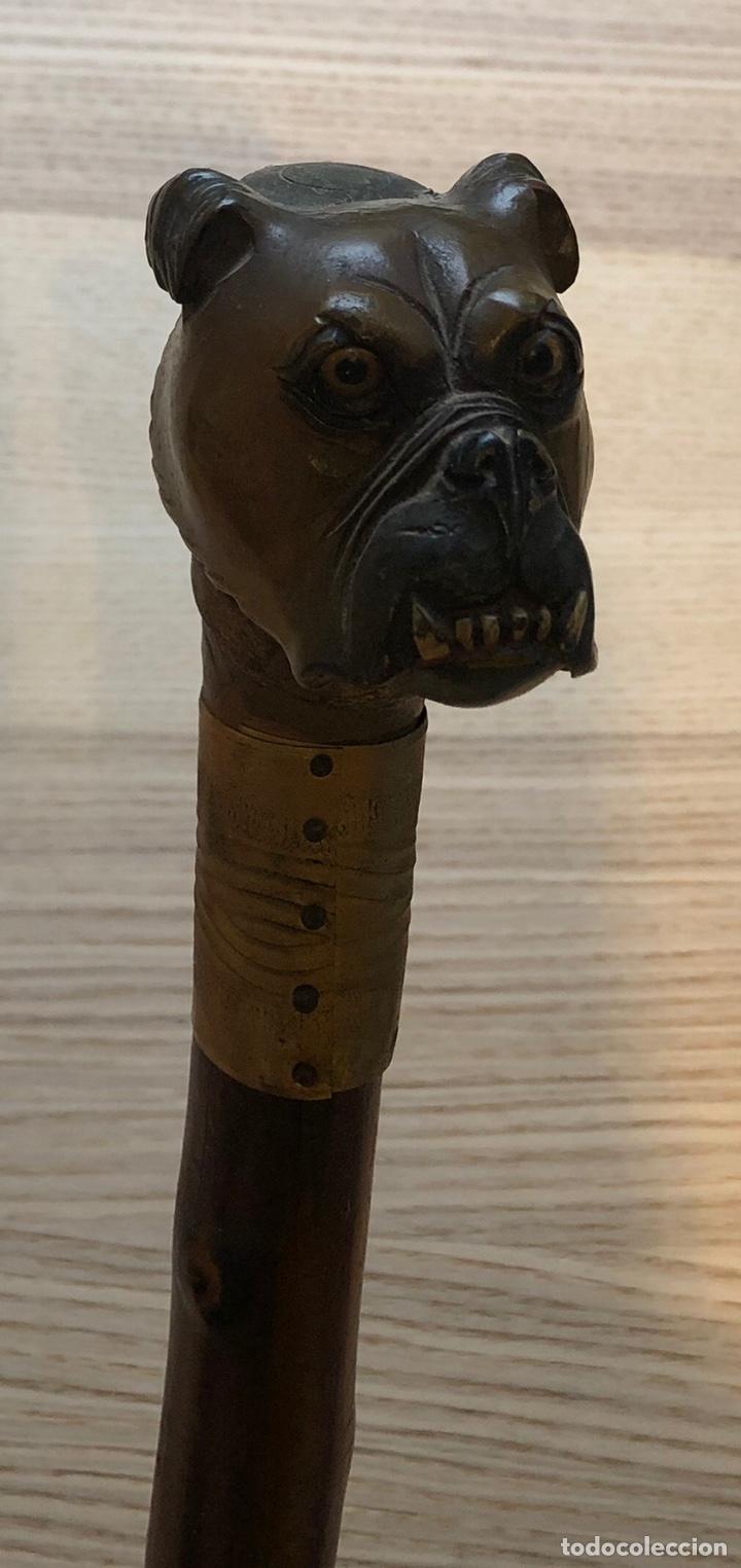 Antigüedades: Antiguo bastón con empuñadura de madera tallada, y vara de caña. - Foto 8 - 212005997