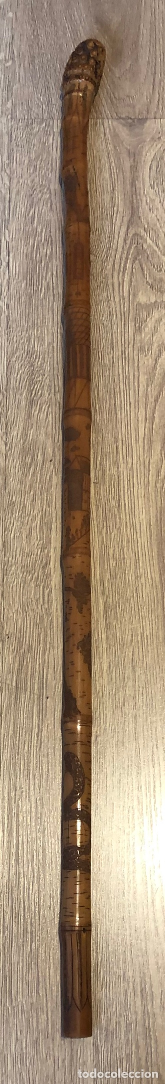 Antigüedades: Antiguo bastón de caña, de una sola pieza, totalmente trabajado, con dibujos. - Foto 2 - 212007061