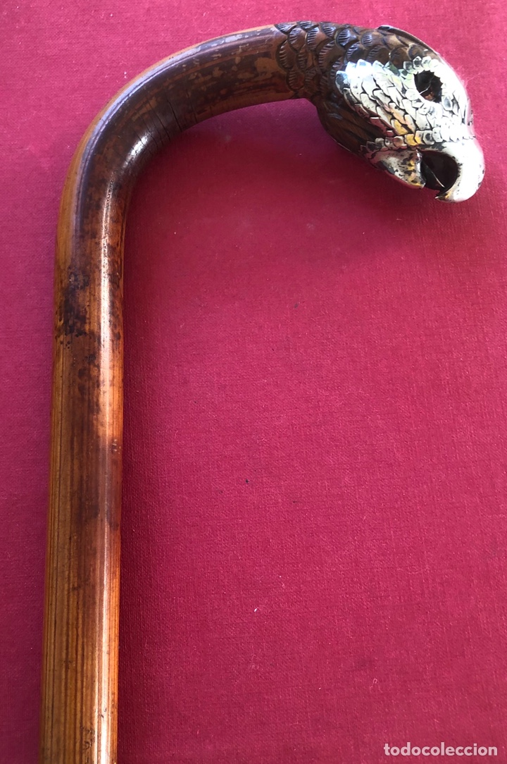 Antigüedades: Maravilloso bastón de colección, con empuñadura recubierta de plata, en forma de ave rapaz. - Foto 8 - 212299825