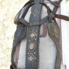 Antigüedades: CABEZADAS ANTIGUAS DE MEDIA GALA 100 € LA UNIDAD. Lote 212560783