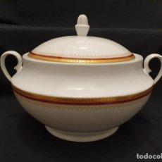 Antiquités: SOPERA PORCELANA DE LIMOGES RIBETE DORADO , FRANCIA. Lote 213266566