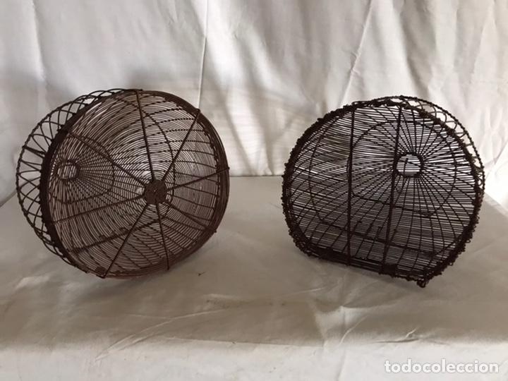 Antigüedades: Pareja de antiguas jaulas - Foto 2 - 213400817