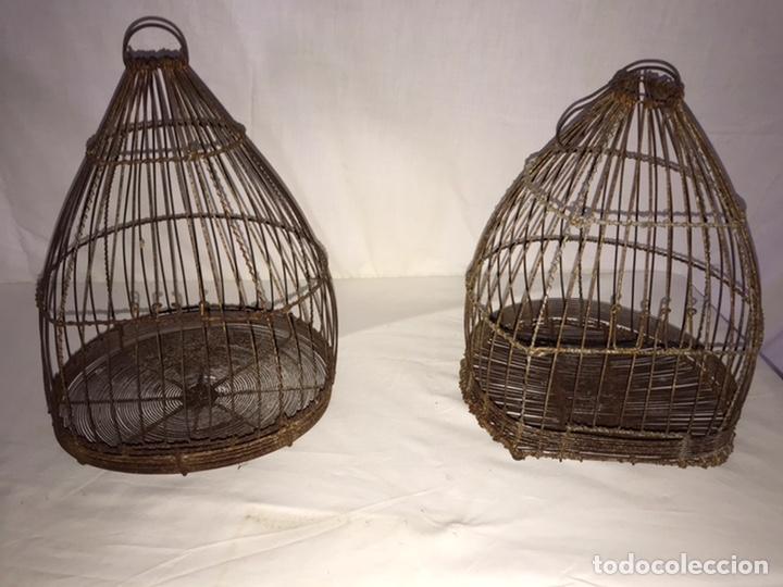 Antigüedades: Pareja de antiguas jaulas - Foto 5 - 213400817
