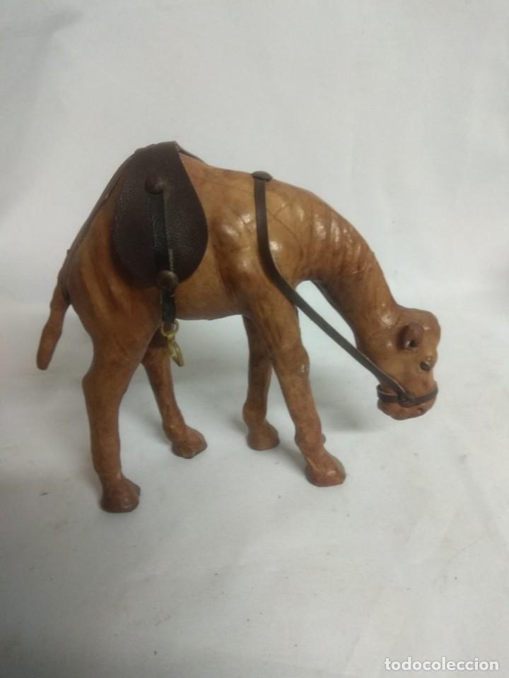 Antigüedades: Pareja de dos raros camellos forrados en símil piel. - Foto 2 - 213506331