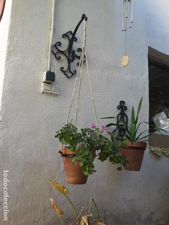 Antigüedades: Macetero de forja precioso jardín hierro macetas eclasiastico de iglesia capillas altares - Foto 2 - 214371707