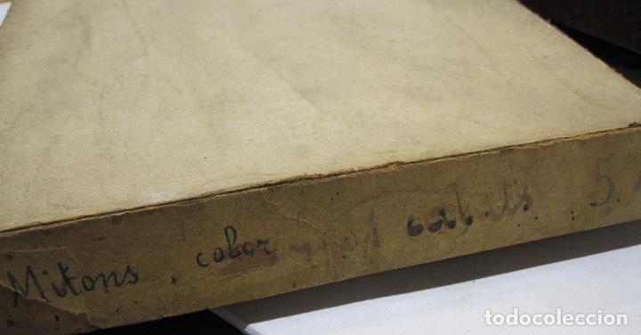 Antigüedades: CAJA DE CARTÓN CON GUANTES MITONES (SIN DEDOS) COLOR DE NIÑA A ESTRENAR. 19 PARES - Foto 7 - 214572175