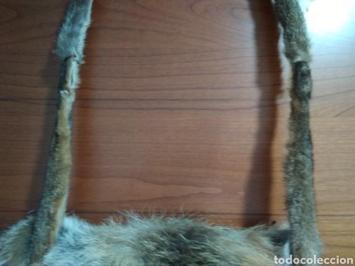 Antigüedades: Original y exclusivo Bolso hecho con piel zorro disecado.Tal cual se ve. Siglo XX. - Foto 6 - 215765977