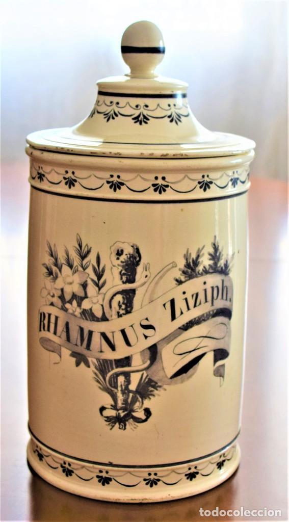 TARRO DE FARMACIA MUY ANTIGUO PINTADO A MANO RHAMNUS ZIZIPH. CON SELLO BASE FERRER ALTURA 25 CM (Antigüedades - Porcelanas y Cerámicas - Otras)