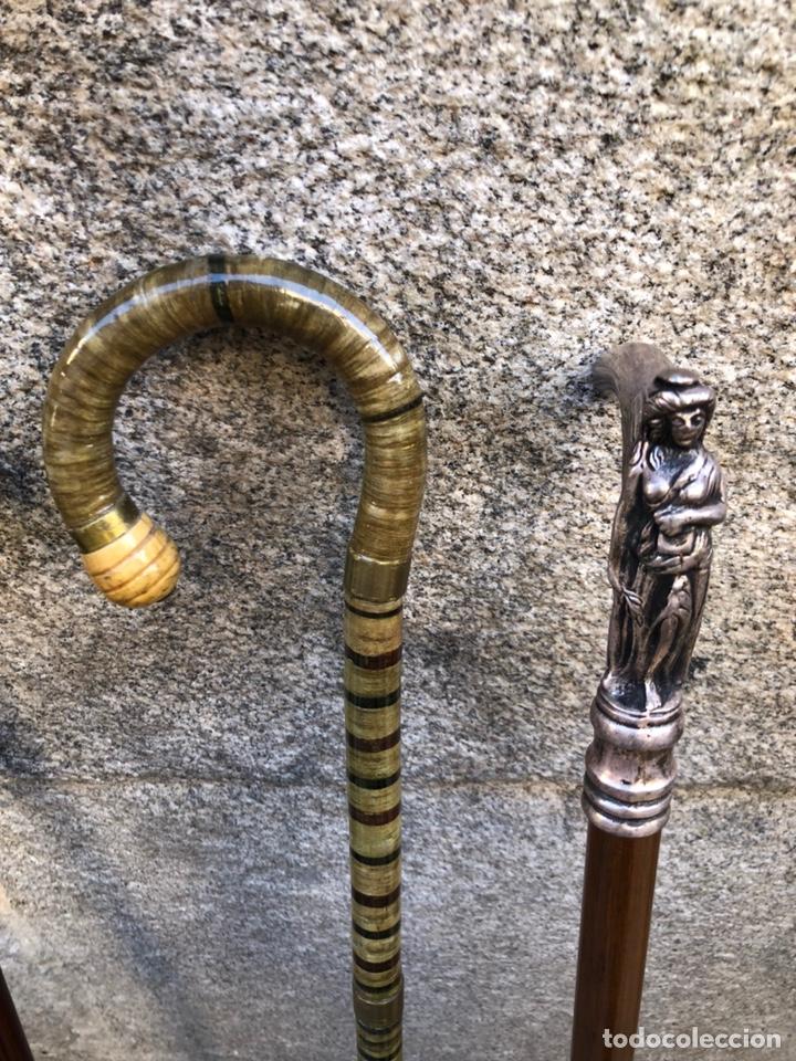 Antigüedades: Bastones Antiguos - Foto 3 - 219030058