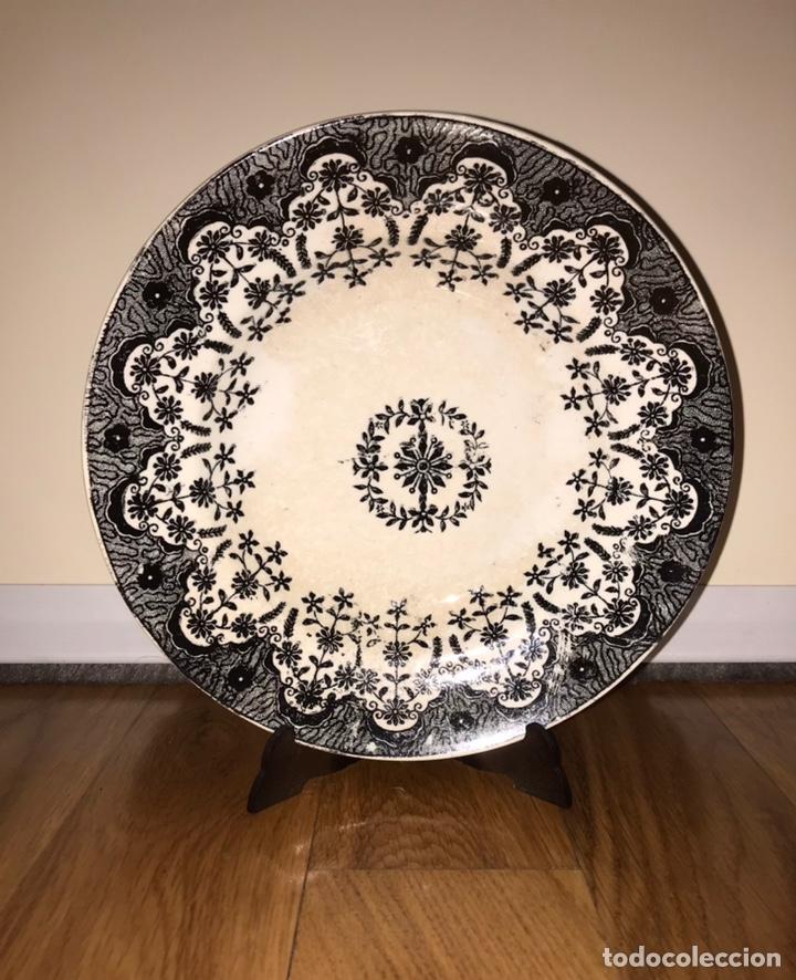 PLATO PORCELANA ASTURIANA SENEN MARIA CEÑAL Y COMPAÑIA (OVIEDO) 1901 - 1920 (SAN CLAUDIO) (Antigüedades - Porcelanas y Cerámicas - San Claudio)