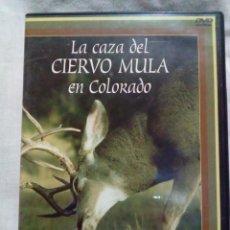 Antigüedades: LA CAZA DEL CIERVO MULA EN COLORADO. Lote 220679068