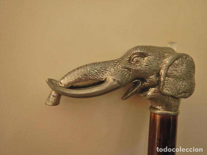 Antigüedades: Baston cabeza de elefante - Foto 4 - 221081498