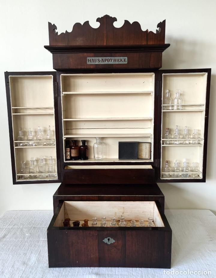 ARMARIO BOTIQUÍN ISABELINO. MADERA DE PALISANDRO. ALEMANIA. SIGLO XIX. (Antigüedades - Muebles Antiguos - Armarios Antiguos)
