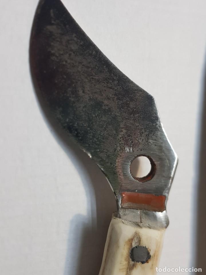 Antigüedades: Útiles agrícolas totalmente artesanos hoz y cuchillo recogida - Foto 5 - 221794785