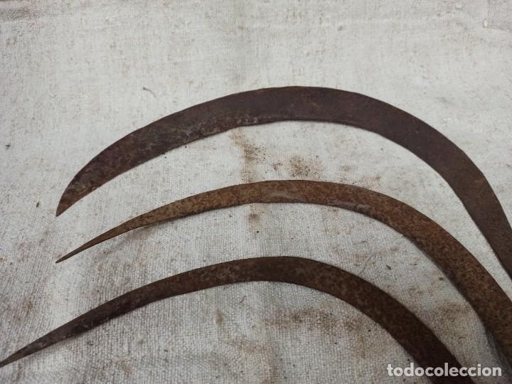 Antigüedades: Lote de tres hoces CG2 - Foto 6 - 223545631