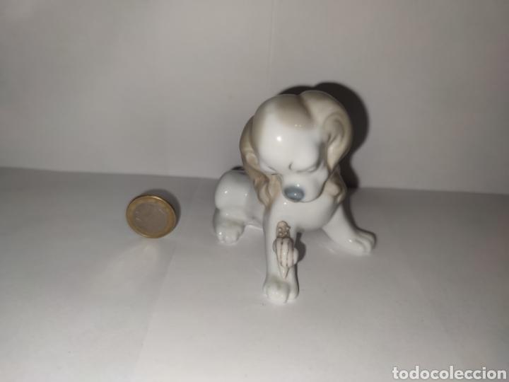 PERRITO CON CARACOL. LLADRÓ (Antigüedades - Porcelanas y Cerámicas - Lladró)