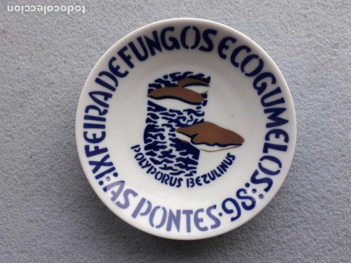 Antigüedades: Platillo Sargadelos. IX Feira de Fungos e Cogumelos. As Pontes 1998. - Foto 2 - 223949732