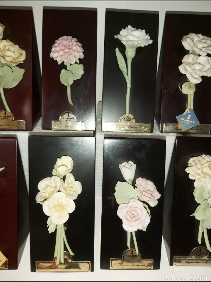 Antigüedades: Colección completa Flores de Lladró - Foto 4 - 225535450