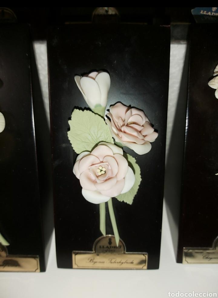 Antigüedades: Colección completa Flores de Lladró - Foto 9 - 225535450
