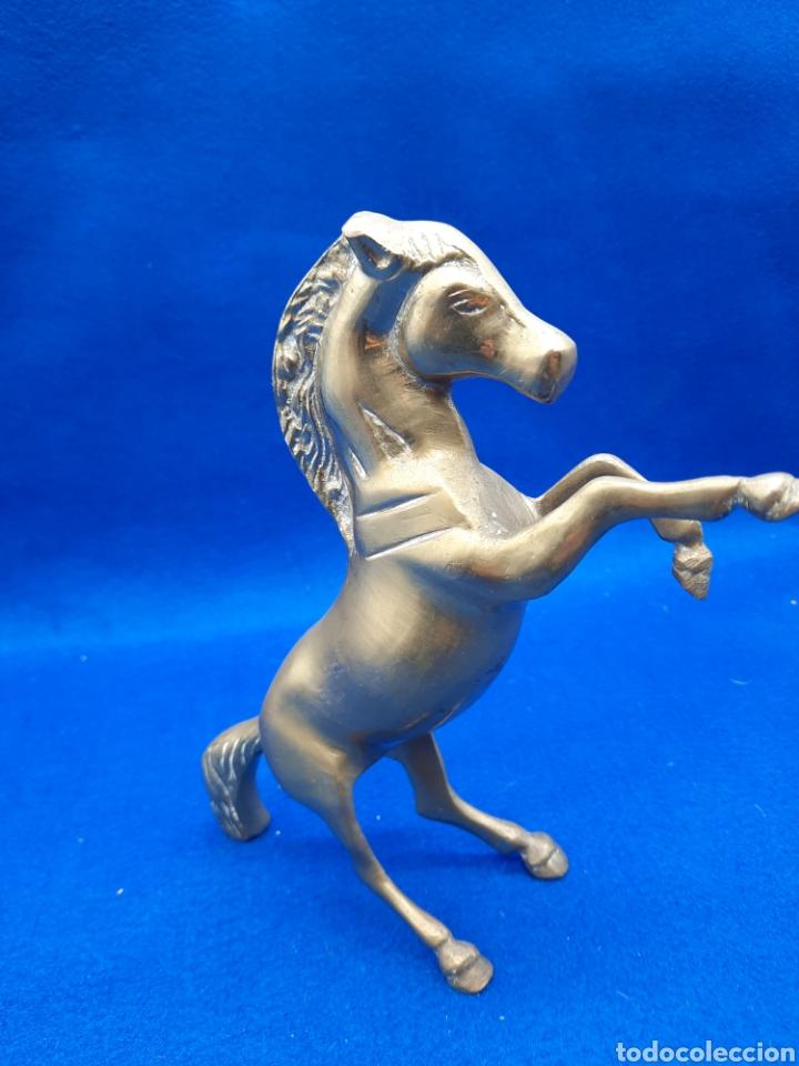 Antigüedades: Viejo caballo de bronce - Foto 2 - 226129625