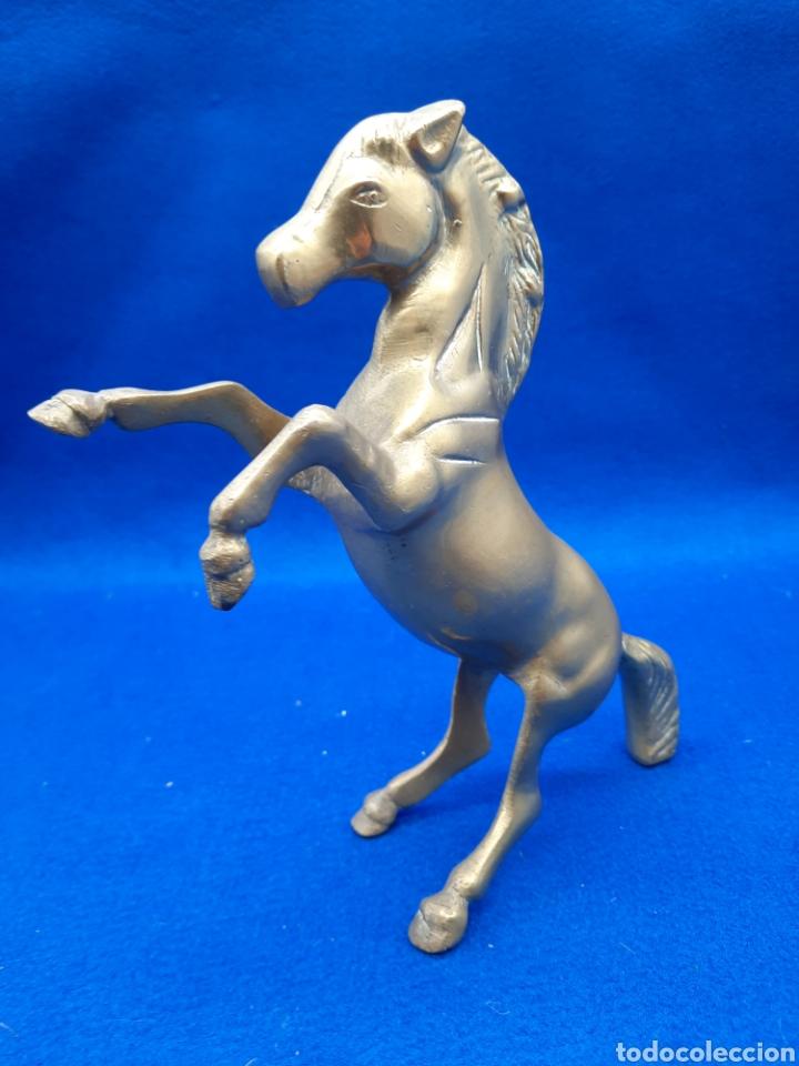 Antigüedades: Viejo caballo de bronce - Foto 3 - 226129625