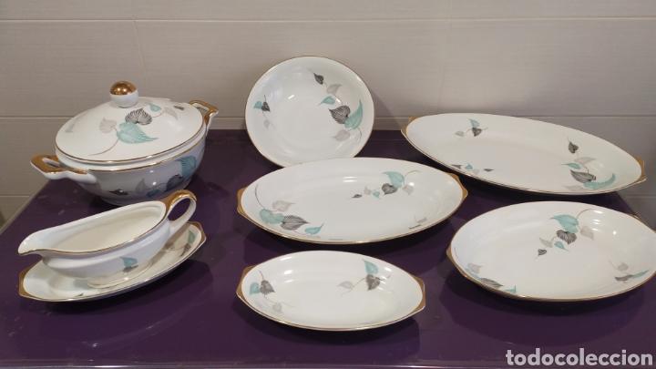VAJILLA SERVICIO ROYAL CHINA VIGO (Antigüedades - Porcelanas y Cerámicas - Santa Clara)