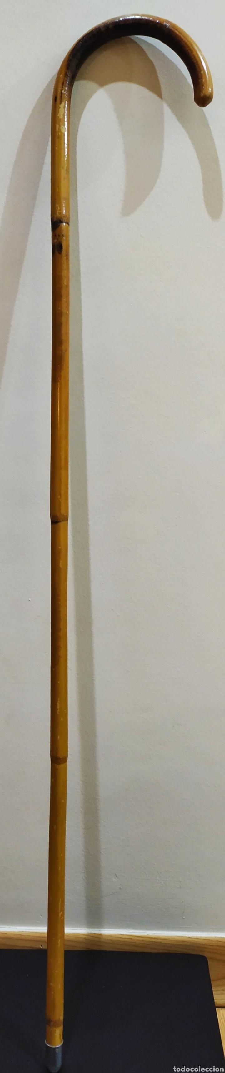 Antigüedades: Bastón/Garrote/Vara/Garrota curva de caña de Bambú. - Foto 15 - 230945355