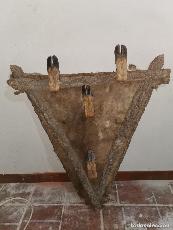 ESPECTACULAR PERCHERO CINEGÉTICO. AÑOS 60 (Antigüedades - Técnicas - Rústicas - Caza)