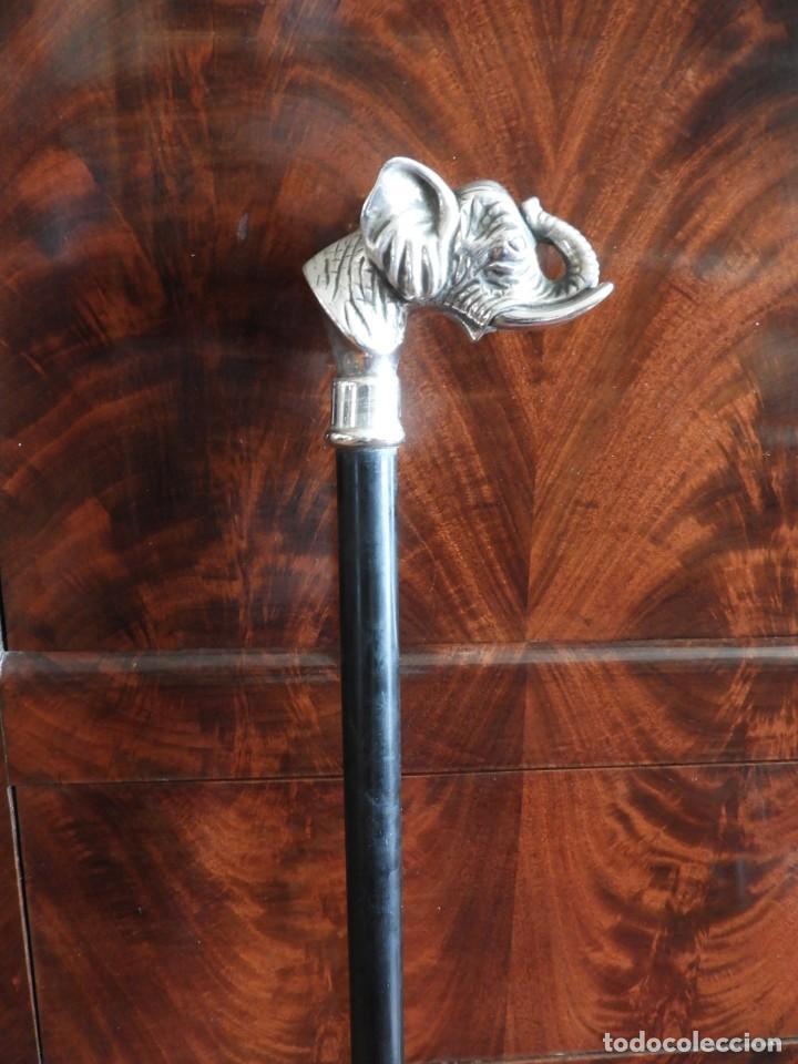 Antigüedades: BASTON CON EMPUÑADURA DE PLATA DE UN ELEFANTE - Foto 2 - 232577140