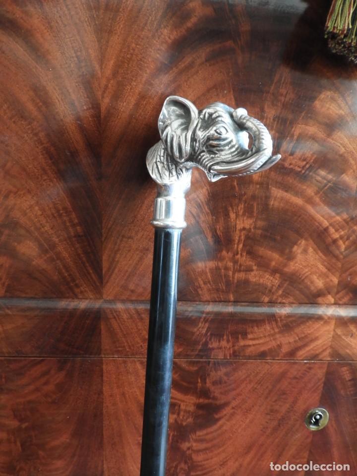 Antigüedades: BASTON CON EMPUÑADURA DE PLATA DE UN ELEFANTE - Foto 3 - 232577140