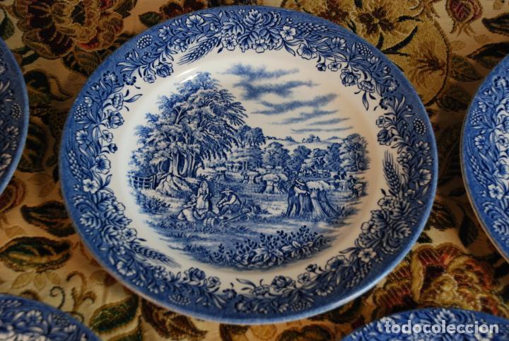 Antigüedades: Vajilla inglesa Churchill. 16 platos de tres tamaños. 24, 20 y 13 cm. Bella decoración. Siglo XX. - Foto 4 - 232761685