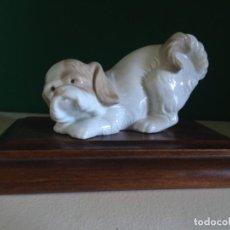 Antigüedades: NAO BY LLADRÓ PORCELANA PERRO. Lote 232968225